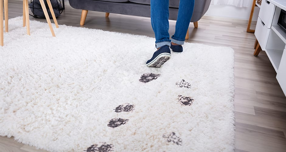 How to Wash Rugs: From Tough Stains to Everyday Messes