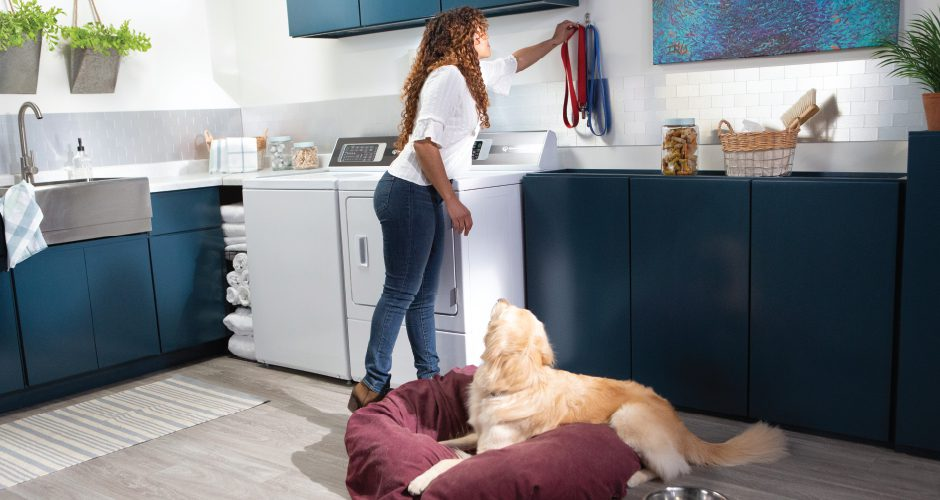 How to Wash Dog Beds, Clean Pet Toys and Get Rid of Pet Hair